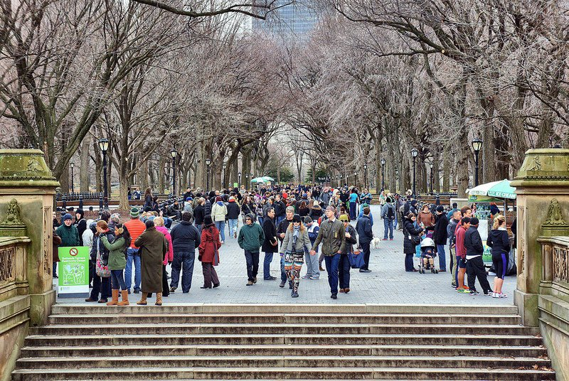 new yorkers the mall central park
