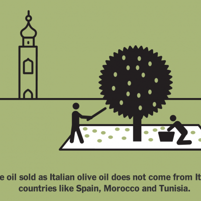 Where to Get Quality Olive Oil in New York