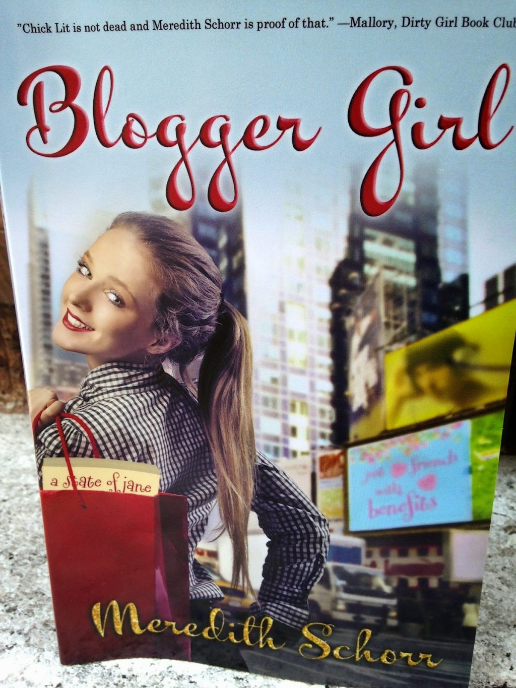 meredith schorr, blogger girl, new york, chick lit,
