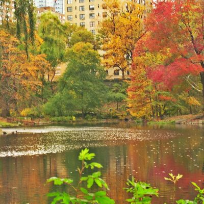 Autumn in New York: Still So Inviting