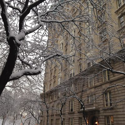 Why You Should Visit New York in Winter