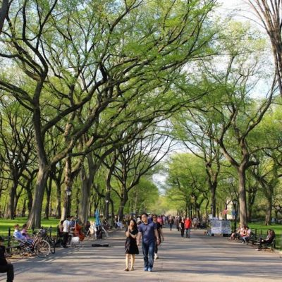 8 Fun Things to Do on Mother's Day in NYC