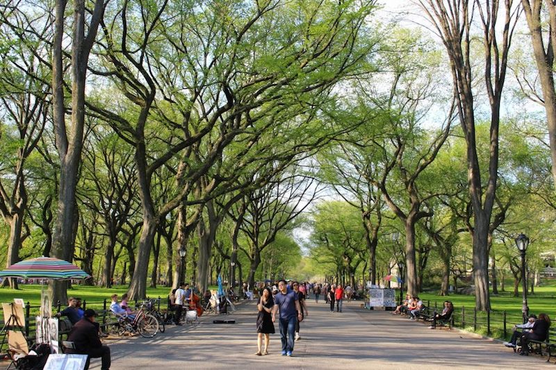 Things to do on mother 39 s day in nyc tracy 39 s new york life for Things to do in nyc for a day