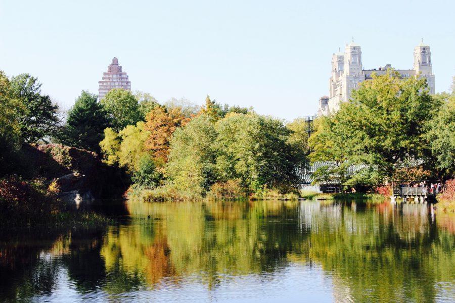 Central Park pond fall NYC
