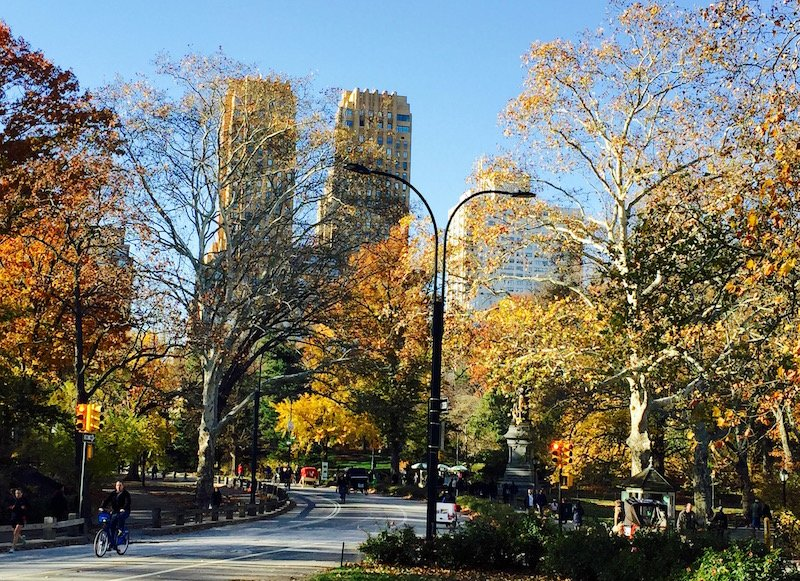 fall central park nyc