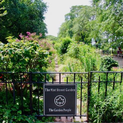 Discover the 91st Street Garden