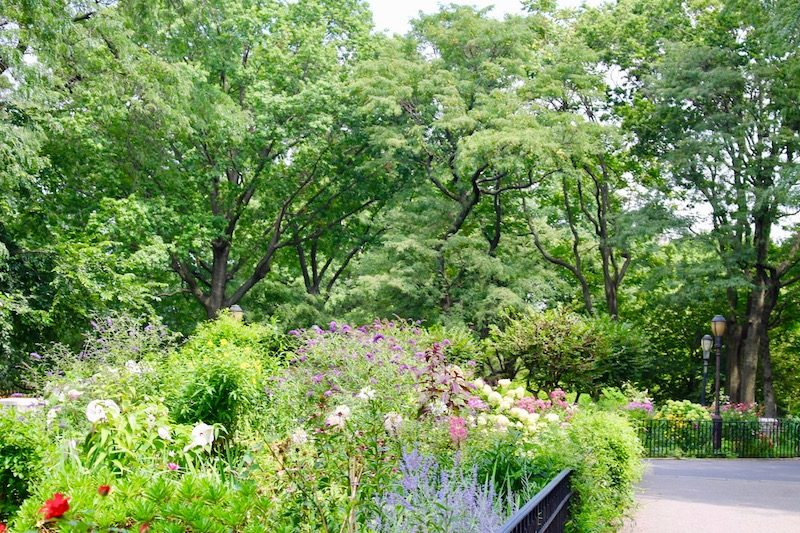 Superb ... A Wet Summer At That), The Lush Greenery And Multicolored Varieties Of  Flowers Have Taken Over The Two Sculpted Parcels Between 90th And 91st  Streets.