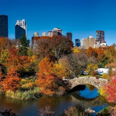 How to Spend Fall Sundays in New York City