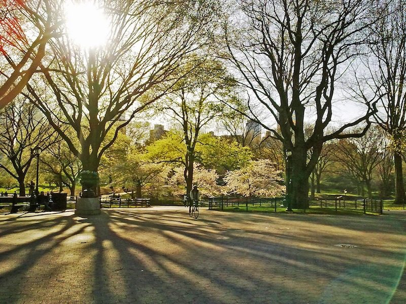 why I love spring in new york