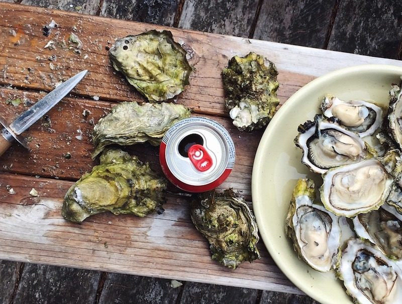 best oyster happy hours in nyc